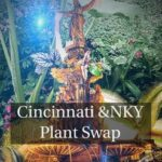 Group logo of Cincinnati/ Northern Kentucky Plant Swap